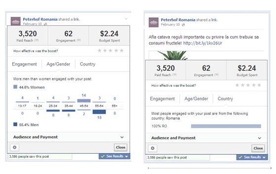 rezultate-campanii-facebook-4